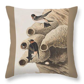 Republican Or Cliff Swallow Throw Pillow by John James Audubon