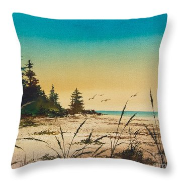 Return To The Shore Throw Pillow by James Williamson