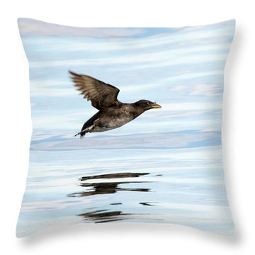 Rhinoceros Auklet Reflection Throw Pillow by Mike Dawson