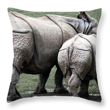 Rhinoceros Mother And Calf In Wild Throw Pillow by Daniel Hagerman