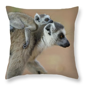 Ring-tailed Lemur Mom And Baby Throw Pillow by Cyril Ruoso