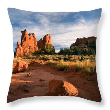 River Of Sand Throw Pillow by Mike  Dawson