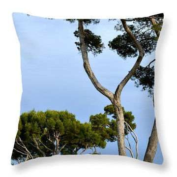 Riviera Trees Throw Pillow by Corinne Rhode