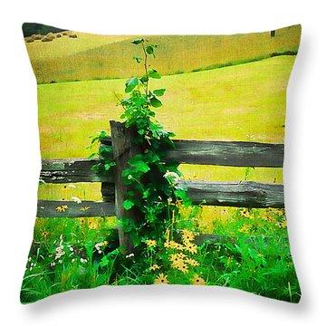 Roadside Beauty Throw Pillow by Darren Fisher