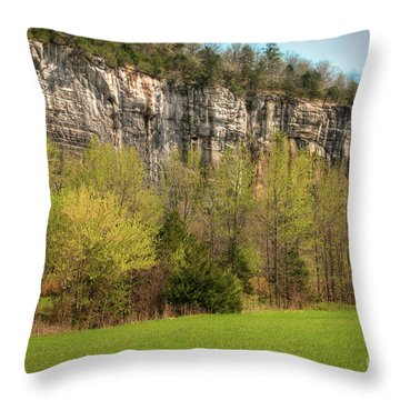Roark Bluff Throw Pillow by Tamyra Ayles