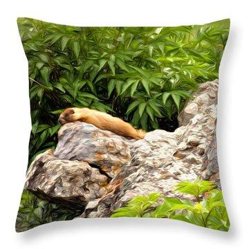 Rock Chuck Throw Pillow by Lana Trussell
