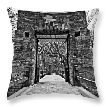 Rock Wood Steel Throw Pillow by CJ Schmit
