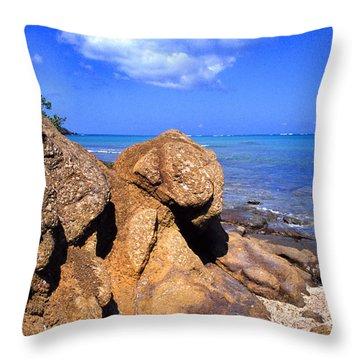 Rocky Shoreline Throw Pillow by Thomas R Fletcher