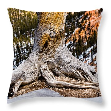 Roots Gripping The Edge Throw Pillow by Christopher Holmes