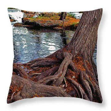 Roots On The River Throw Pillow by Stephen Anderson