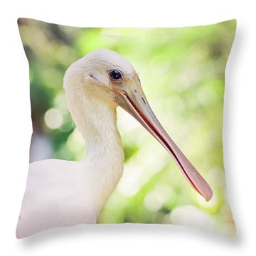 Roseate Spoonbill Throw Pillow by Heather Applegate