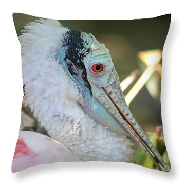 Roseate Spoonbill Profile Throw Pillow by Carol Groenen