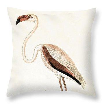 Rosy Flamingo Throw Pillow by English School