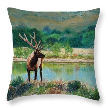 Royal Velvet Throw Pillow by Mary Benke