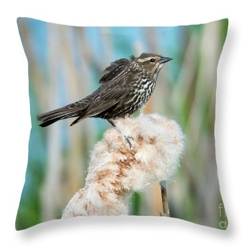 Ruffled Feathers Throw Pillow by Mike Dawson