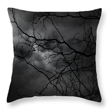 Ruler Of The Night Throw Pillow by Lourry Legarde