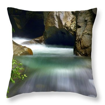 Rushing Water Throw Pillow by Marty Koch
