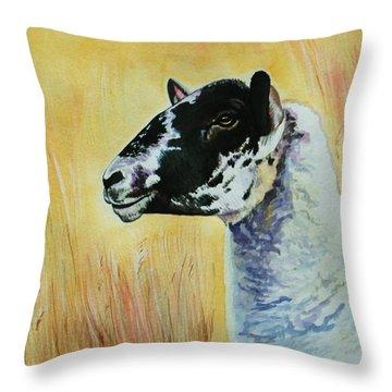 Rutland Sheep  Throw Pillow by Lucy Deane