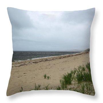 Ryder Beach Truro Cape Cod Massachusetts Throw Pillow by Michelle Wiarda