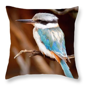 Sacred Kingfisher Throw Pillow by Mike  Dawson