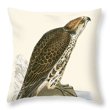 Saker Falcon Throw Pillow by English School