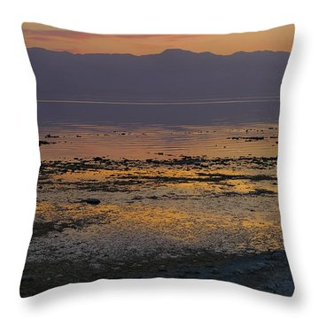 Salton Throw Pillow by Skip Hunt