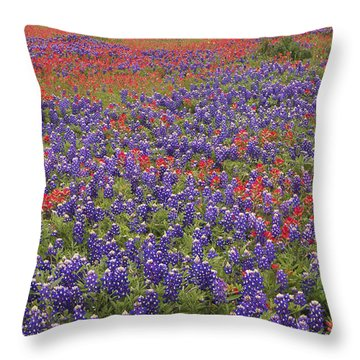 Sand Bluebonnet And Paintbrush Throw Pillow by Tim Fitzharris