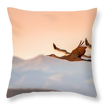 Sandhill Cranes Flying Over New Mexico Mountains - Bosque Del Apache, New Mexico Throw Pillow by Ellie Teramoto