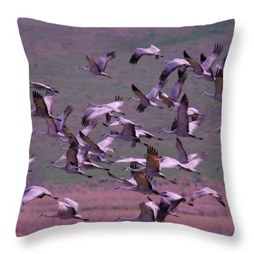 Sandhill Cranes  Throw Pillow by Jeff Swan