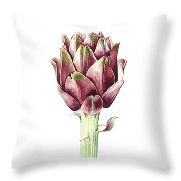 Sardinian Artichoke Throw Pillow by Alison Cooper