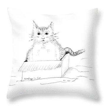 Schrodinger Cat Throw Pillow by Regina Valluzzi