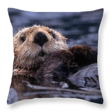 Sea Otter Throw Pillow by Yva Momatiuk and John Eastcott and Photo Researchers