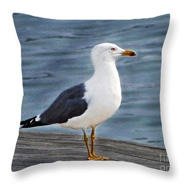 Seagull Portrait Throw Pillow by Sue Melvin