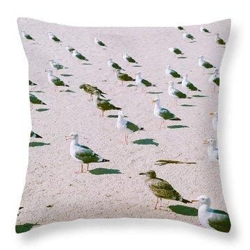 Seagulls  Throw Pillow by Ariane Moshayedi