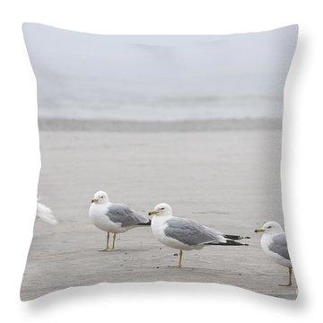 Seagulls On Foggy Beach Throw Pillow by Elena Elisseeva
