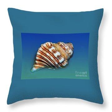 Seashell Wall Art 1 Throw Pillow by Kaye Menner
