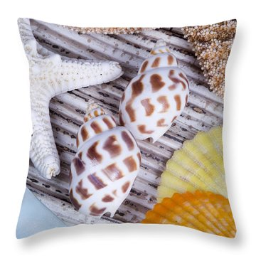 Seashells And Starfish Throw Pillow by Bill Brennan - Printscapes