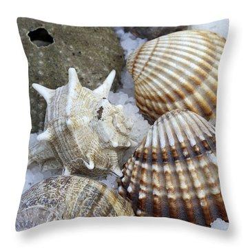 Seashells Throw Pillow by Frank Tschakert