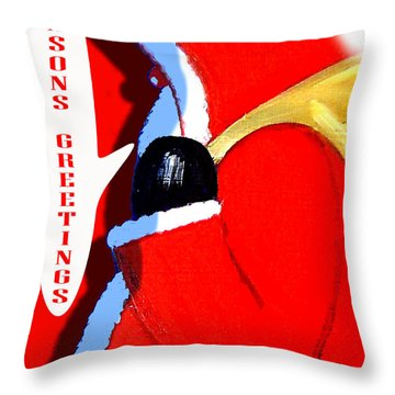 Seasons Greetings 5 Throw Pillow by Patrick J Murphy