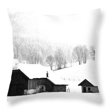 Seen Many Storms Throw Pillow by Sabine Jacobs