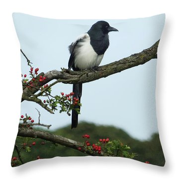 September Magpie Throw Pillow by Philip Openshaw
