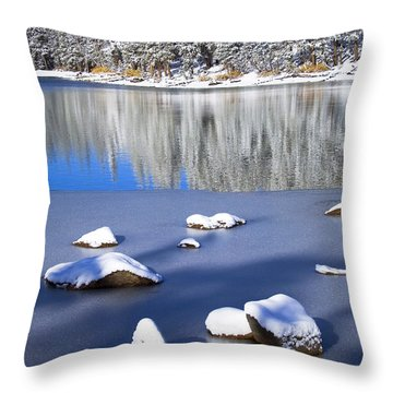 Shadowed Coolness Throw Pillow by Chris Brannen