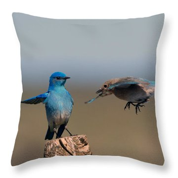Share My Post Throw Pillow by Mike Dawson