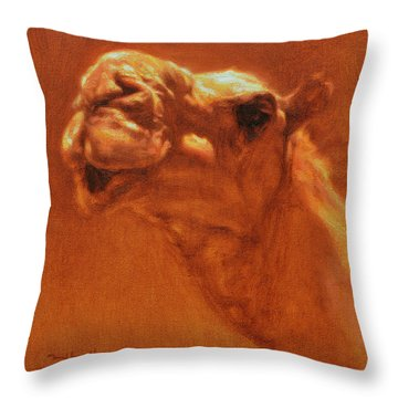 Sheikh Jamel Throw Pillow by Ben Hubbard