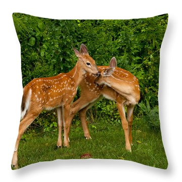 Sibling Love Throw Pillow by Karol Livote