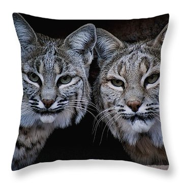 Side By Side Throw Pillow by Elaine Malott
