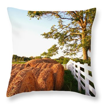 Side-by-side Throw Pillow by Todd A Blanchard
