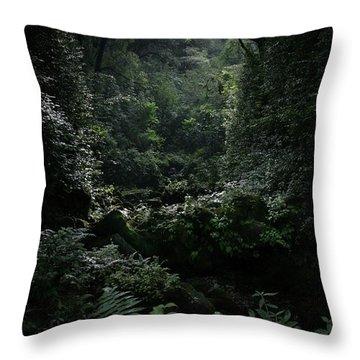 Silence Is Round Me   - Mokulehua Throw Pillow by Sharon Mau
