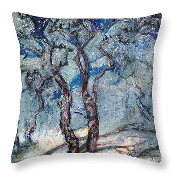 Silver Beach Throw Pillow by Sergey Ignatenko