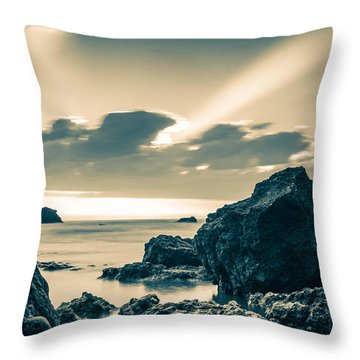 Throw Pillow featuring the photograph Silver Moment by Thierry Bouriat